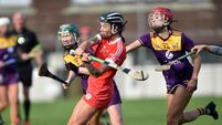 Youthful Cork camogie side will have it all to do away to champions Galway