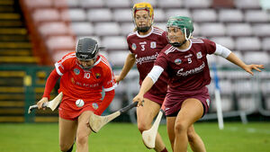 Cork camogie boss Paudie Murray is furious with treatment dished out to his captain Amy O'Connor