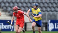 Cork camogie boss says his players will have to up the gears against Kilkenny