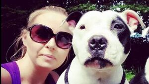 Cork woman appeals for help after dog suddenly loses ability to walk