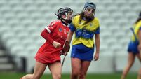 Cork are into the All-Ireland camogie semis but jury is still out on progress