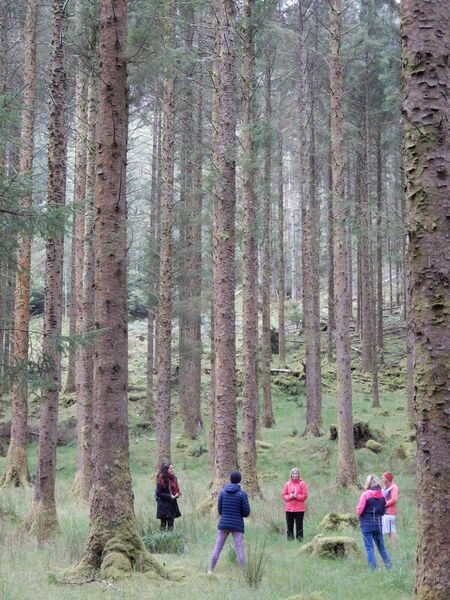 Oliva Relinque from Spain leading a forest bathing walk.