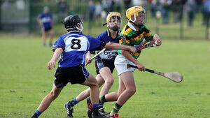 Cork clubs implore Rebel Óg to reverse decision on U13 and U15 grades