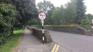 Calls to protect historic Cork bridge from HGVs