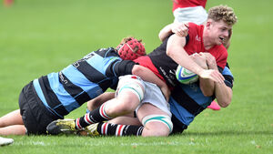 Cork rugby: UCC are in devastating form against Shannon in the Mardyke