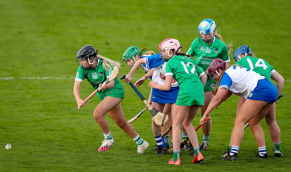 Limerick's Katie Finn breaks free against Waterford in last weekend's camogie clash. Picture: INPHO/Tommy Dickson