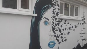 Putting street art at the heart of a Cork community
