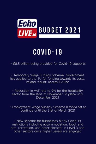 Budget 2021 - Covid-19 supports