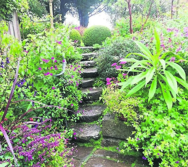 Rounded steps leading to the upper level of the garden, surrounded by late summer colour.