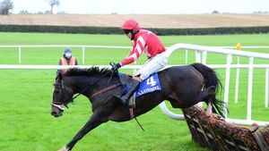 Cork racing: Kilworth farmer Des Kenneally has a sharp edge as a trainer