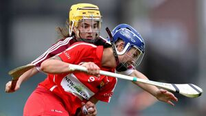 Cork camogie preparations thrown out as Offaly pull out of Saturday's game