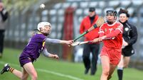 Cork secured spot in camogie knockout stages with win over Wexford