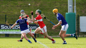 Howard's way fires deadly Dromtarriffe into last four of the junior hurling county