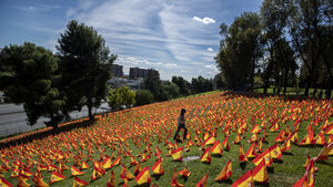 Flags fly for pandemic victims in Spanish park