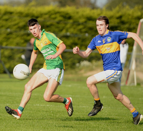 Gerry O'Sullivan (Boherbue) and Paul Fleming (Cullen) battle for the ball. Picture: John Tarrant