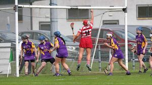 Cork Camogie: Courcey Rovers shake off St Catherine's to secure semi-final spot