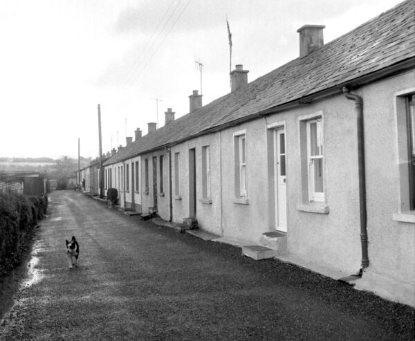 Picture taken in december 1971 of employees homes who worked in Morrogh's Mills, Douglas.