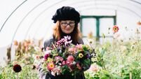 Disaster blossomed into a new opportunity for Cork wild flower farmer