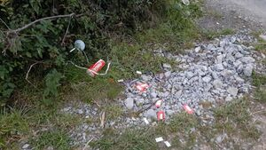 Person nabbed for littering after Cork county councillor discovered receipt amongst the rubbish