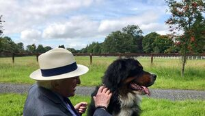 Síoda, beloved dog of President Higgins, dies