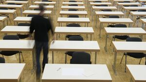 Echo Comment: Leaving Cert grades disaster must be fixed