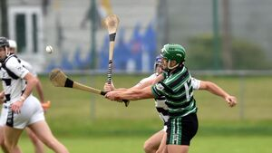Cork stars deliver as Douglas see off Ballyhea, with Alan Cadogan hitting 0-6