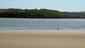 Public warned not to swim at Cork beach