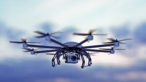 Thieves may be using drones to scope out dogs to steal in Cork