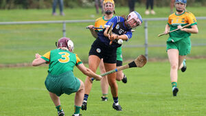 Desmond fires Sarsfields into next round of senior camogie championship with win over Cloughduv