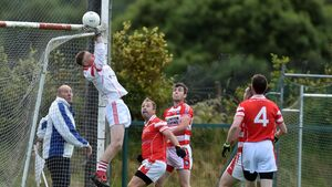 Cork football: Adrigole withstand a feisty comeback from Mayfield