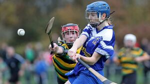 Impressive Inniscarra show no mercy to blitz Ballincollig in camogie first round