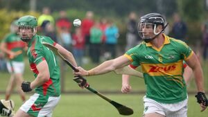 Your guide to the first round of Cork Premier Intermediate Hurling games