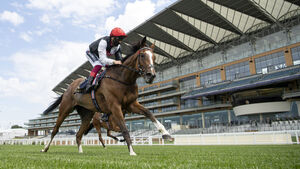 Racing: Huge Irish interest at day five of Royal Ascot