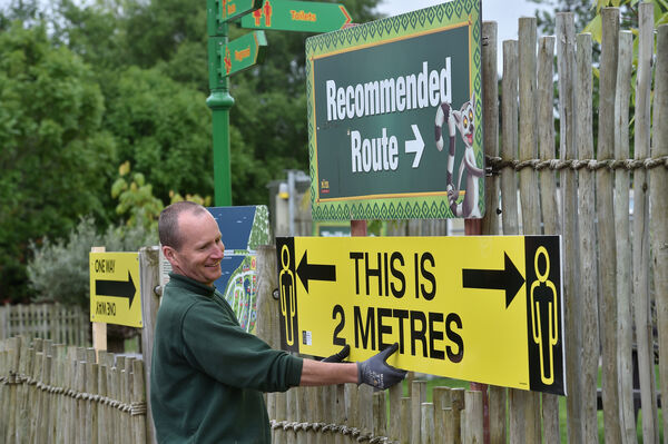Paddy O'Reilly putting up one of the many social distance signs at Fota Wildlife Park, Cork, which opened to the public this week. Picture Dan Linehan