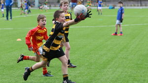 Rebel Óg Coaching will run games for U8 to U11 players in Cork but only nine clubs are holding Cúl Camps