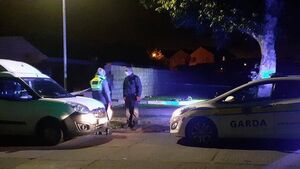 Second teen arrested over Carrigaline attack; Two more interviewed by gardaí