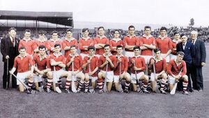 Cork minor hurlers of 1964 were a major team to bridge a gap of 13 years