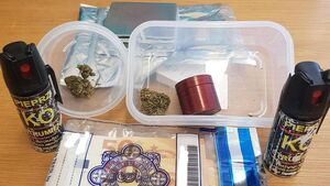 Suspected cannabis, pepper spray and €1.3k seized by Gardaí in Cork