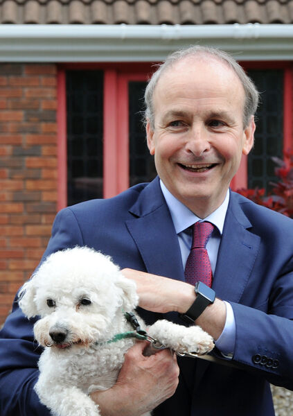 An Taoiseach, Micheál Martin, T.D., with the family dog, Setanta, on his return home to Ballinlough in Cork.Picture Denis Minihane.