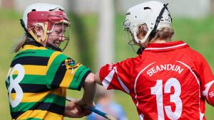 The Linda Mellerick column: Camogie needs to keep pushing for new heights