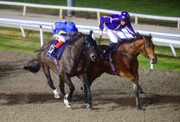 Morph Speed and Ross Coakley (right) win the Dundalk Stadium Handicap from Sharjah. Picture: Healy Racing