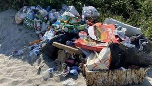 Litter warden urged to increase patrols at Ringaskiddy beaches following concerns