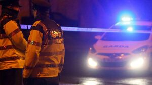 Gardaí open fire during two incidents in Cork city and Fermoy