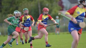 Cork camogie: Carbery have opted out of championship due to Covid-19 fears