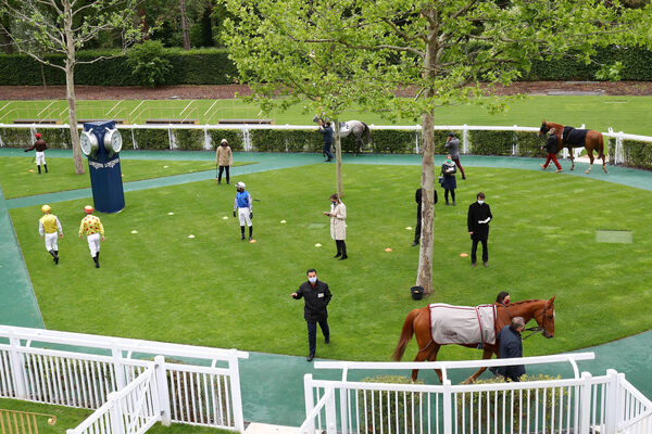 The scene around the parade ring for the return of racing in France on Monday. Picture: Healy Racing