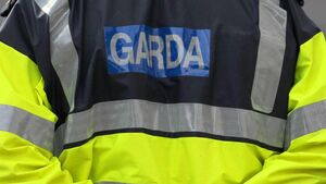 Cork teenager jailed after calling gardaí 'pigs'