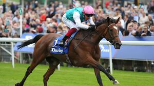Cork Racing: Jane Mangan marks your card ahead of the Epsom Derby
