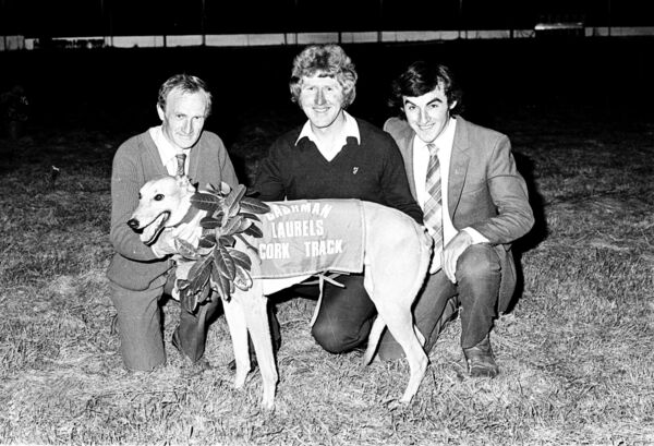 Greyhound Racing, Laurels Final at Cork Track in 1982.