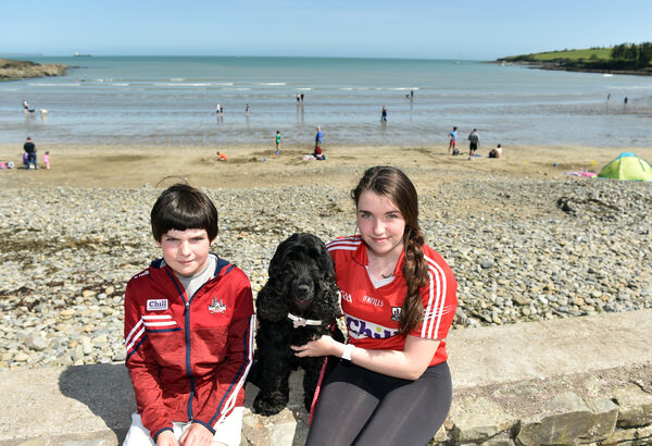Aoife and Darragh Flynn with Millie enjoying the sunshine at Fountainstown beach in Co. Cork yesterday.Picture: Eddie O'Hare