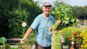 Watch: Cork man (86) wins Bloom gardening award